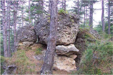 04 3 451x301 - Das alte Grab bei Hernstein