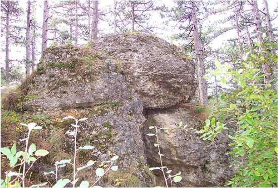 06 2 - Das alte Grab bei Hernstein