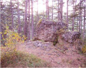 08 2 295x234 - Das alte Grab bei Hernstein