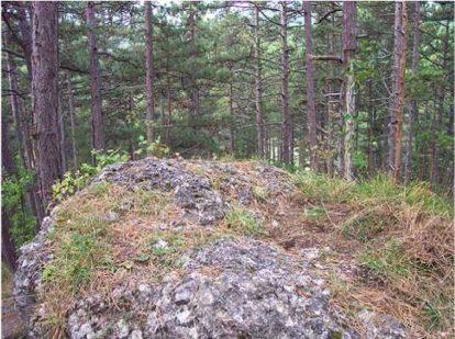 09 2 414x309 - Das alte Grab bei Hernstein
