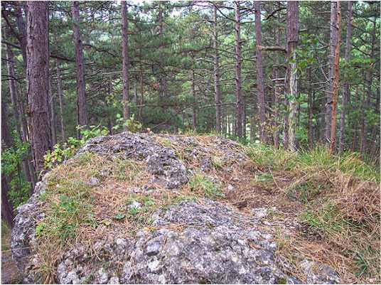 09 2 - Das alte Grab bei Hernstein