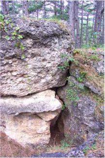13 1 217x325 - Das alte Grab bei Hernstein