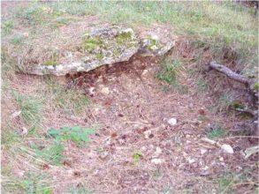 15 1 293x220 - Das alte Grab bei Hernstein