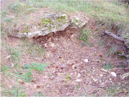 15 1 430x324 - Das alte Grab bei Hernstein