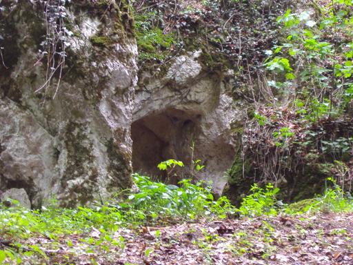 p5072071 - Zwergerlhöhlen, Malleiten