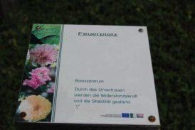 SerpentinEngergiegartenBernstein_043
