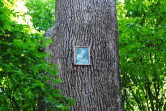 PoetzleinsdorferSchlosspark_119