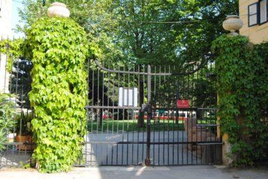 PoetzleinsdorferSchlosspark 176 385x258 - Kraftplätze & Kultbäume im Pötzleinsdorfer Schlosspark