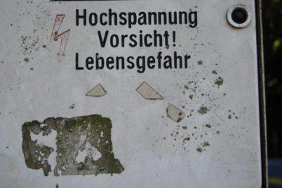 PoetzleinsdorferSchlosspark 178 402x269 - Kraftplätze & Kultbäume im Pötzleinsdorfer Schlosspark