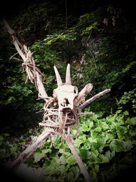 HoellentalSchwarza 025 537x720 - Besuch in Hels Tal: die Schwarza im Höllental