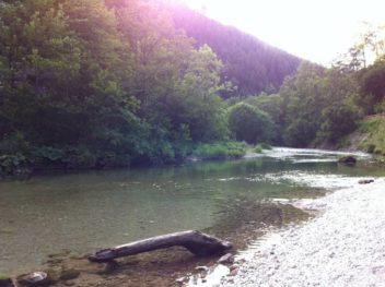 HoellentalSchwarza 031 352x263 - Besuch in Hels Tal: die Schwarza im Höllental