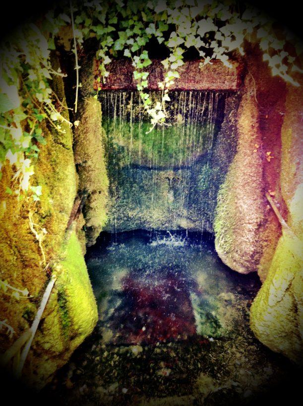juli2011  307 611x818 - Bad Fischauer Thermalbad: Schwimmen, wo schon die Römer und Kelten gebadet haben ...