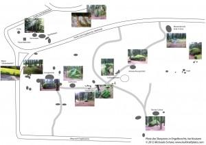 Plan Skorpionplatz Bilderskizze1 300x212 - Der Platz des Skorpions bei Kautzen