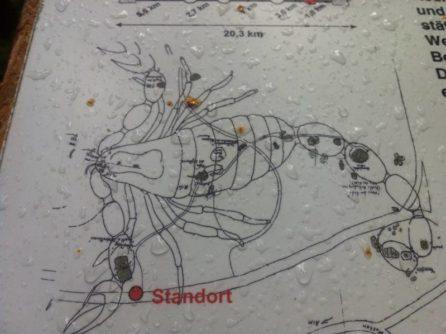 Platz des Skorpions 015 446x334 - Der Platz des Skorpions bei Kautzen