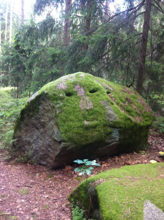 Im mystischen Waldviertel lächeln sogar die Steine geheimnisvoll