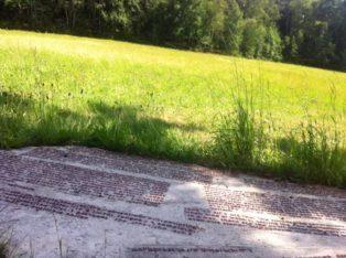 Platz des Skorpions 095 314x234 - Der Platz des Skorpions bei Kautzen
