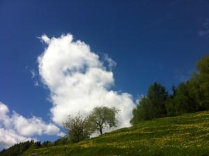 alm1 300x224 - Der Mai: Wonnig, heilig, blumig und hoffentlich nass