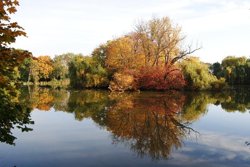 MILAK Park Herbst 2013 018 - Herbstzauber im MILAK Park