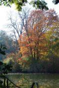 MILAK Park Herbst 2013 030