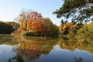 MILAK Park Herbst 2013 034