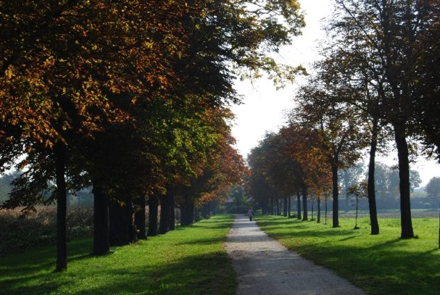 MILAK Park Herbst 2013 040 633x424 - Herbstzauber im MILAK Park