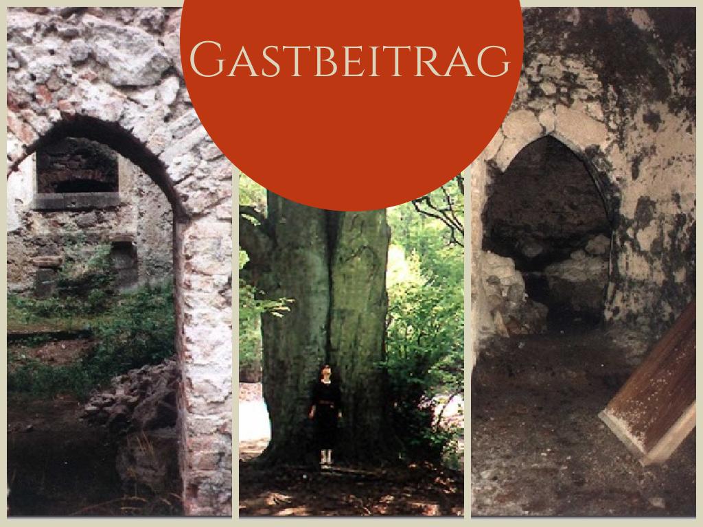 MerkensteinHeader - Gastbeitrag: Burgruine Merkenstein