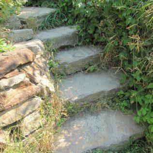 stairs 210858 1280 316x316 - Mariä Himmelfahrt, die Kräuterweihe und der Frauendreißiger