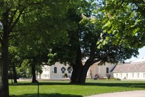 Laxenburg 110515 011 300x201 - Parkzauber im Laxenburger Schlosspark: Bäume, Wasser, Stein und Wiesen