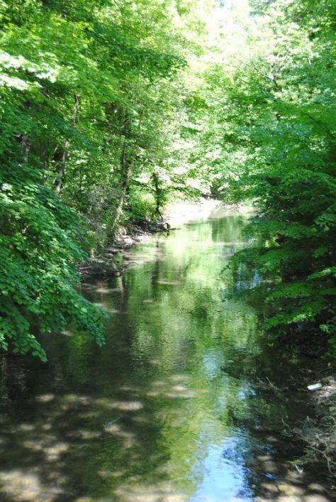 Laxenburg 110515 017 474x707 - Parkzauber im Laxenburger Schlosspark: Bäume, Wasser, Stein und Wiesen