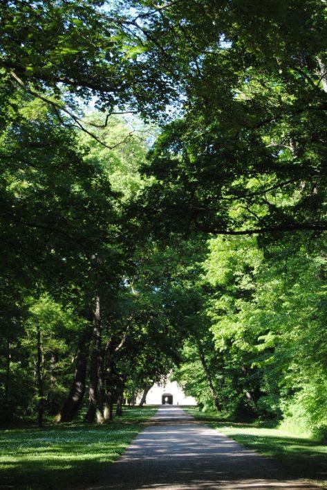 Laxenburg 110515 054 473x707 - Parkzauber im Laxenburger Schlosspark: Bäume, Wasser, Stein und Wiesen