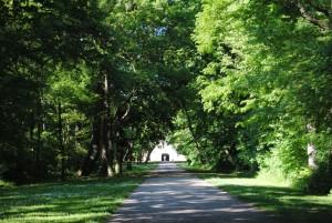 Laxenburg 110515 055 300x201 - Parks & Landschaften