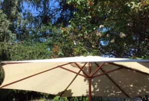 Sonnenschirm 300x204 - Der Juli: Heuert, bärig und sehr heiss
