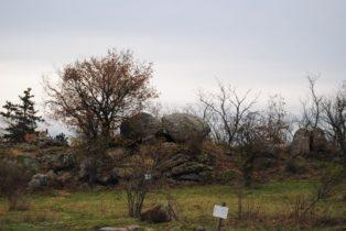 Fehhaube Nov15 013 314x210 - Die wundersame Fehhaube und die magischen Kogelsteine