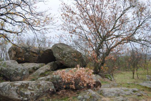 Fehhaube Nov15 030 498x333 - Die wundersame Fehhaube und die magischen Kogelsteine