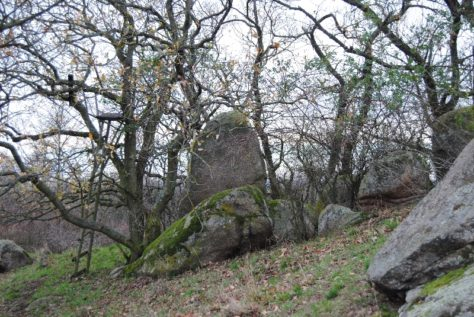 Fehhaube Nov15 056 474x317 - Die wundersame Fehhaube und die magischen Kogelsteine