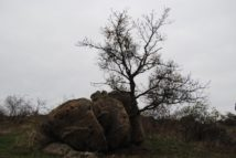 Kogelsteine Nov15 009