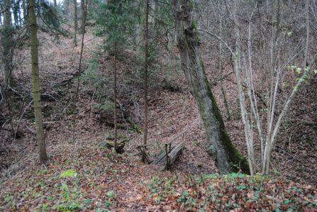 Bruendl Graslhoehle Nov15 023