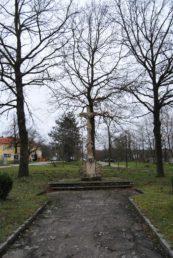 Maria Dreieichen Nov15 057 173x258 - Das traurige Ende von Maria Dreieichen?