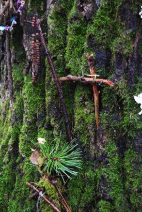 MaurerWald Dez15 027 293x438 - Der neolithische Steinbruch im Maurer Wald