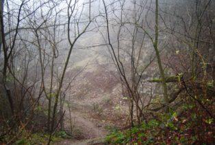 MaurerWald Dez15 042 314x211 - Der neolithische Steinbruch im Maurer Wald