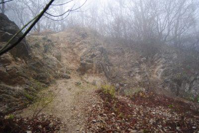 MaurerWald Dez15 059 401x269 - Der neolithische Steinbruch im Maurer Wald