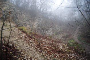 MaurerWald Dez15 060 314x210 - Der neolithische Steinbruch im Maurer Wald