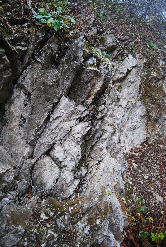 MaurerWald Dez15 062 - Der neolithische Steinbruch im Maurer Wald