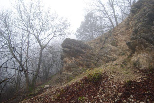 MaurerWald Dez15 069 633x424 - Der neolithische Steinbruch im Maurer Wald