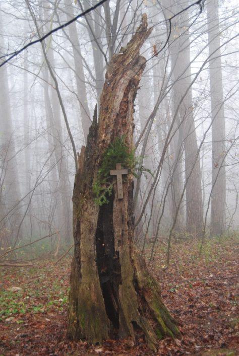 MaurerWald Dez15 074 474x707 - Der neolithische Steinbruch im Maurer Wald