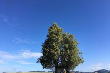 LindenBadKreuzen 373x248 - Termine 2018: Neues, Bewährtes und Klassisches!