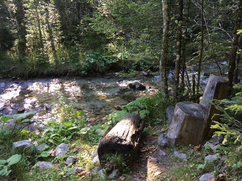 BruendlwegAllEinSeinsmall - Waldzitat