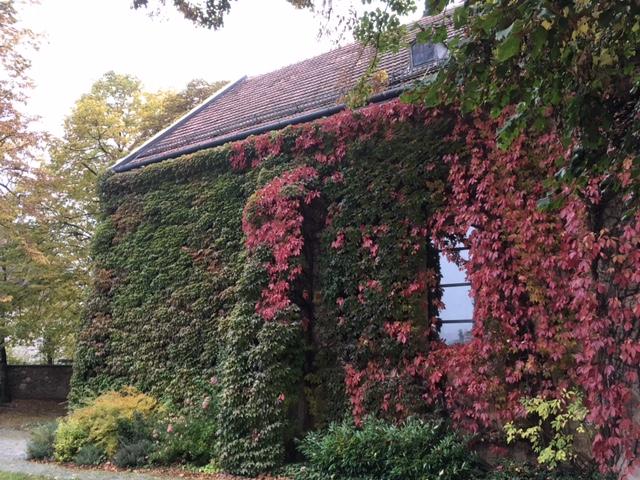 IMG 0700 - St. Peter am Moos - die Pfarrkirche von Muthmannsdorf