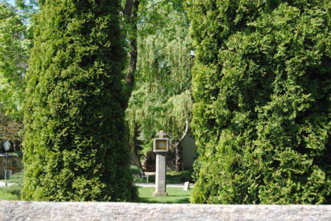 Kirche MuMaDo2012 058 654x438 - St. Peter am Moos - die Pfarrkirche von Muthmannsdorf