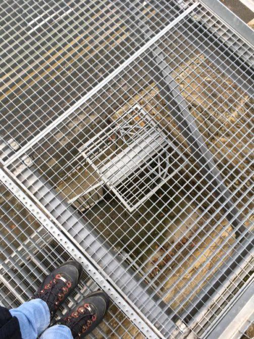 eggenburg2016 019 503x670 - Mystische Kraftplätze in und um Eggenburg